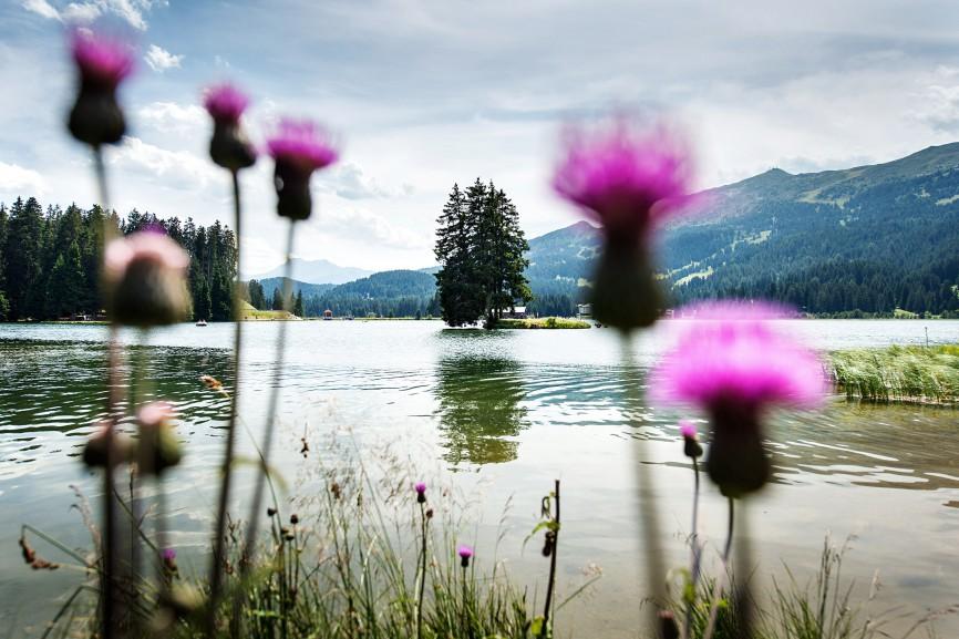 028swl_landschaftsfotografie_fotograf_suisse